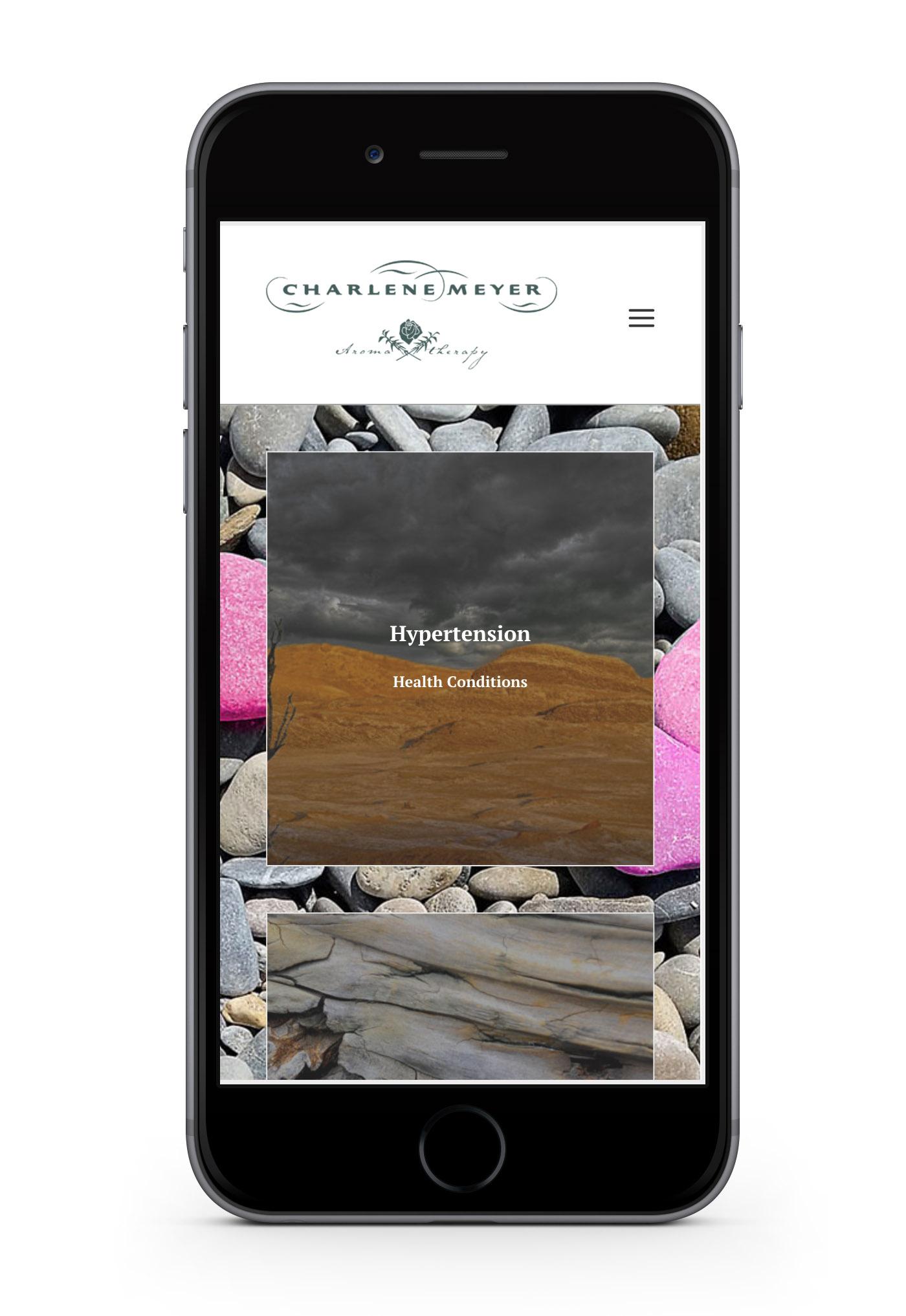 charlene meyer web design portfolio-webdoor-responsive-web-design-agency-hillcrest-kwazulu-natal-phone