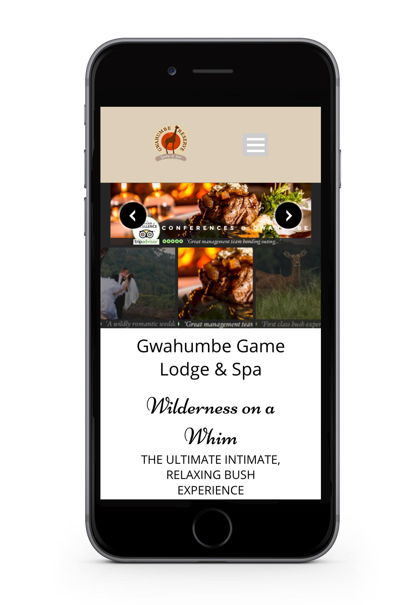 Gwahumbe-web-design-portfolio-webdoor-responsive-web-design-agency-hillcrest-kwazulu-natal-phone