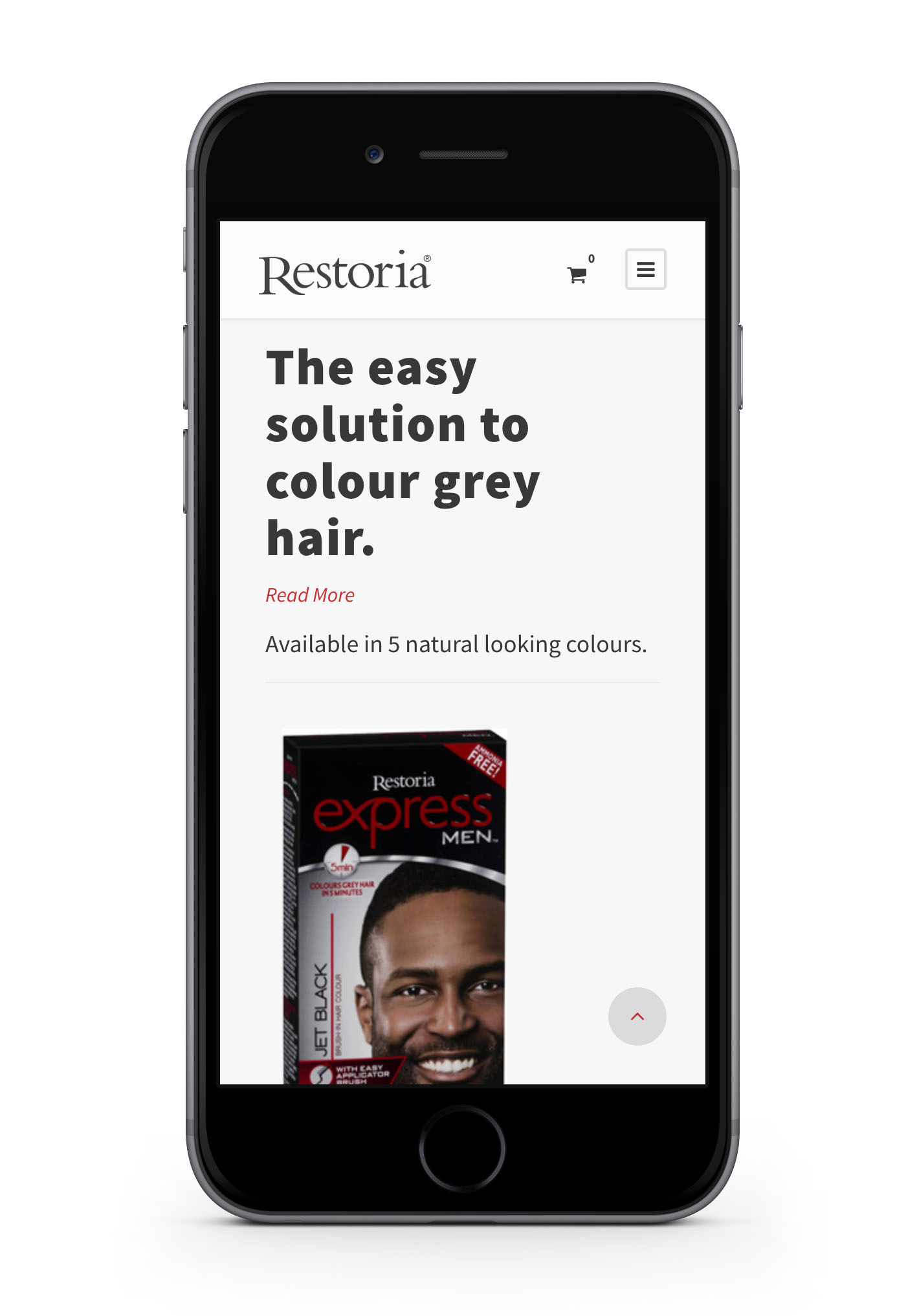 restoria-web-design-portfolio-webdoor-responsive-web-design-agency-hillcrest-kwazulu-natal-phone